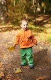 Adorable toddler boy at fall Stock Image