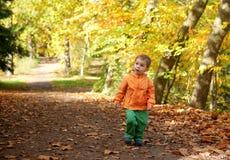 Adorable toddler boy at fall Royalty Free Stock Image