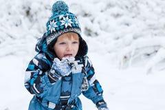 Adorable toddler boy having fun with snow Stock Photo
