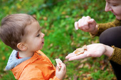 Adorable toddler boy with his mother Stock Image