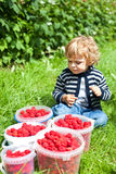 Adorable toddler with bucket of raspberries Stock Photography