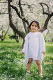 Adorable toddler child girl in light blue dressy outfit walking and playing in blooming spring garden Royalty Free Stock Photo