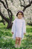Adorable toddler child girl in light blue dressy outfit walking and playing in blooming spring garden Royalty Free Stock Photos