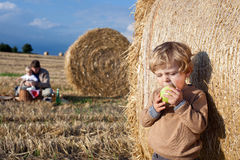 Adorable toddler eating apple on golden field Royalty Free Stock Image