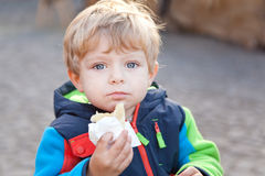 Adorable toddler eating bread outdoor Stock Images