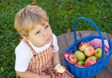 Adorable toddler eating fresh apple Royalty Free Stock Photos