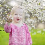 Adorable toddler girl in blooming cherry garden Stock Photo