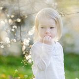 Adorable toddler girl in blooming cherry garden Royalty Free Stock Images