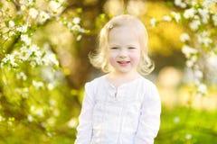Adorable toddler girl in blooming cherry garden Royalty Free Stock Photos