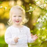 Adorable toddler girl in blooming cherry garden Stock Image