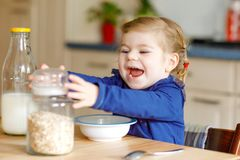 Adorable toddler girl eating healthy oatmeals with milk for breakfast. Cute happy baby child in colorful clothes sitting. In kitchen and having fun with royalty free stock photography