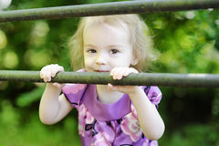Adorable toddler girl on a green background Stock Photography