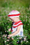 Adorable toddler girl in meadow Royalty Free Stock Photo