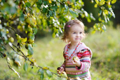 Adorable toddler girl outdoors Royalty Free Stock Photo