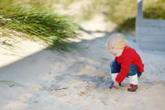 Adorable toddler girl playing in a sand Stock Image