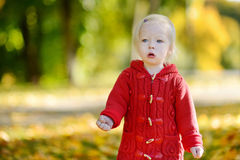 Adorable toddler girl portrait on autumn day Royalty Free Stock Photos