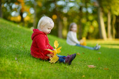Adorable toddler girl portrait on autumn day Stock Photography