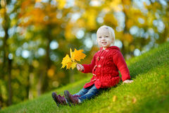 Adorable toddler girl portrait on autumn day Royalty Free Stock Image