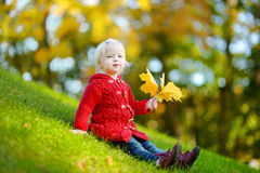 Adorable toddler girl portrait on autumn day. Adorable toddler girl sitting on a green grass and holding yellow mapple leaves on beautiful autumn day Stock Image