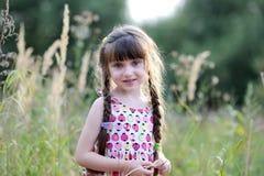 Adorable toddler girl in summer field Stock Photos