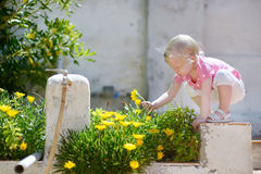 Adorable toddler girl trying to pick a flower Royalty Free Stock Photography