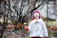 Adorable toddler having fun on autumn day Royalty Free Stock Image