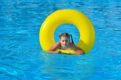 Adorable toddler relaxing in swimming pool Royalty Free Stock Photo
