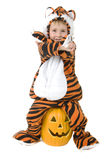 Adorable toddler in tiger costume royalty free stock photos