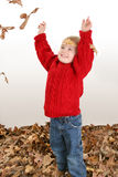 Adorable Two Year Old Playing In Leaves stock image