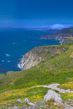Adorable View of Coastline in Big Sur,California, United States. Vertical Image Stock Photos