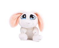 Adorable white bunny Stock Images