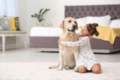 Adorable yellow labrador retriever and little girl. At home stock photo