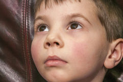 Adorable young boy royalty free stock photo