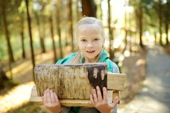 Adorable young girl carrying tree logs to a bonfire. Child having fun at camp fire. Camping with children in fall forest. Family leisure with kids at autumn royalty free stock image