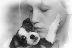 Adorable young girl and puppy Royalty Free Stock Images