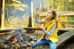 Adorable young girl roasting marshmallows on stick at bonfire. Child having fun at camp fire. Camping with children in fall forest. Family leisure with kids at stock photography