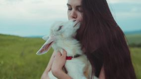 Adorable young woman holding, hugging and kissing cute white goat kid. Nature lover, enjoying life. Slow motion, camera. Stabilizer shot, close up view stock video footage