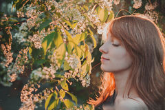 Adorable young woman witn blooming flowers tree Royalty Free Stock Photos
