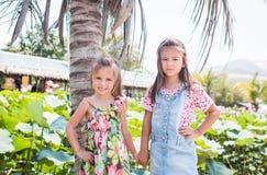 Adorables son dos niñas que se colocan al lado de una palma grande, de una sonrisa y de una agujereadas imagen de archivo libre de regalías