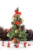 Adoración - árbol de navidad Foto de archivo libre de regalías