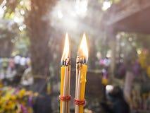 Adoración Buda de la vela en el templo Fotos de archivo