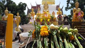 Adoración, budismo, templo, tailandés Imagen de archivo