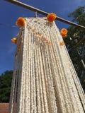 Adoración de la guirnalda del arroz Fotografía de archivo