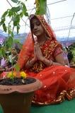 Adoración de Tulsi en Bhopal Foto de archivo