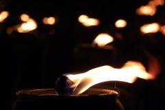 Adoración por la luz Imágenes de archivo libres de regalías