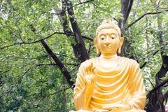 Adorador da Buda Fotografia de Stock Royalty Free