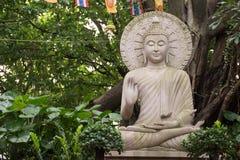 Adorador da Buda Foto de Stock Royalty Free