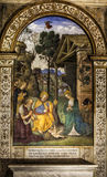 The Adoration of the Child. Pinturicchio. Della Rovere Chapel (of the Nativity). Santa Maria del Popolo, Rome. Italy. Church of Santa Maria del Popolo in Piazza royalty free stock photos