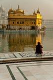 Adoratore femminile al tempio dorato Fotografia Stock