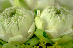 Adore el loto del estilo tailandés tradicional Imagen de archivo